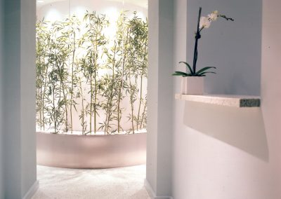 Plants and lights
