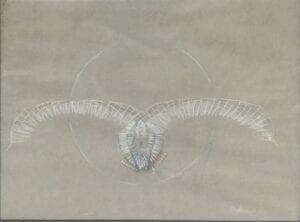 Abstract artwork of a bird by Stephen Carpenter