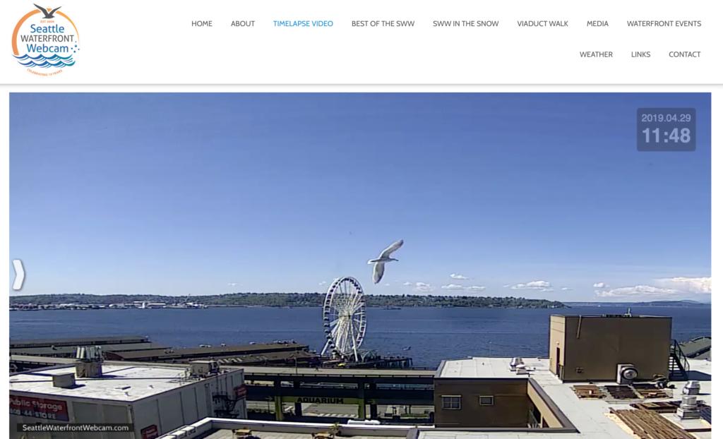 Seattle Waterfront Webcam Big Bird Above The Seattle Great Wheel