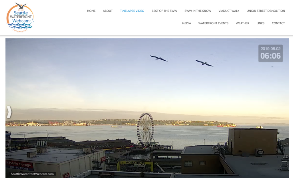 Seattle Waterfront Webcam High-Flying Twin Seagulls