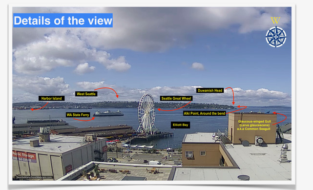 Seattle Waterfront Webcam Detail Shot 07 2019