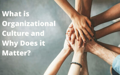 What is Organizational Culture and Why Does it Matter?