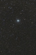 procyon-star-sm