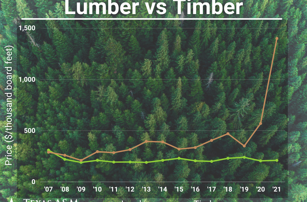 Best Explanation for Timber vs. Lumber Price Imbalance