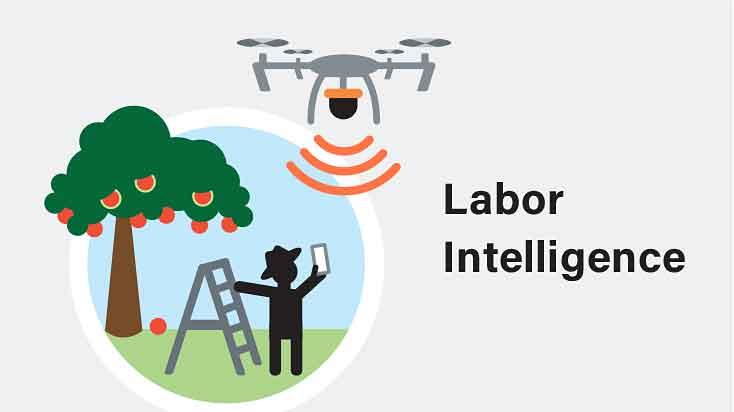 Copyright © AgAID Institute - Labor Intelligence