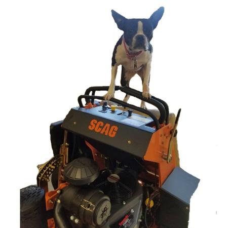 Pet Friendly Lawn Services