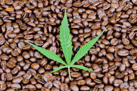 hemp-coffee-750x500