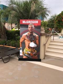 boxer banner stands