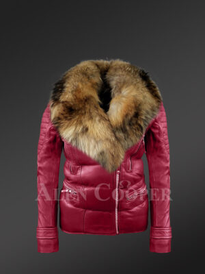 Women's Puffy Motorcycle Jacket With Fur in Wine new view