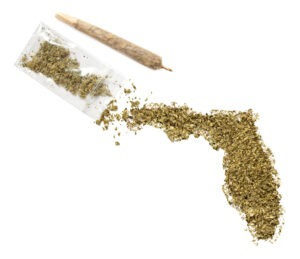 Grinded,Weed,Shaped,As,Florida,And,A,Joint.(series)