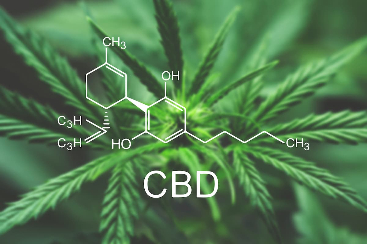 Nature's Green House explains the history of the CBD chemical found in cannabis plants