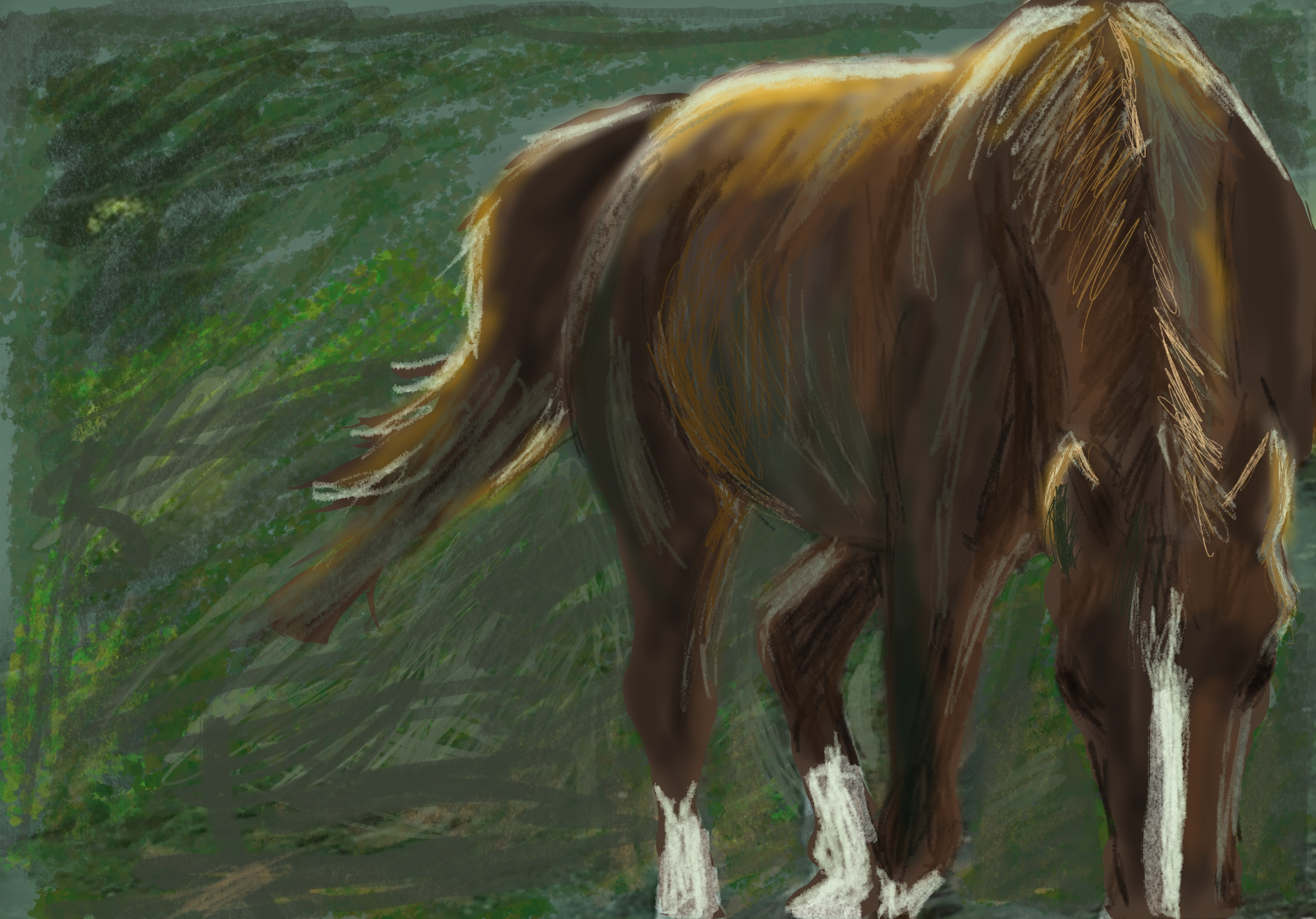 This is an iPad sketch of my horse Tiggy that I recently completed.