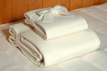 Wool Pad