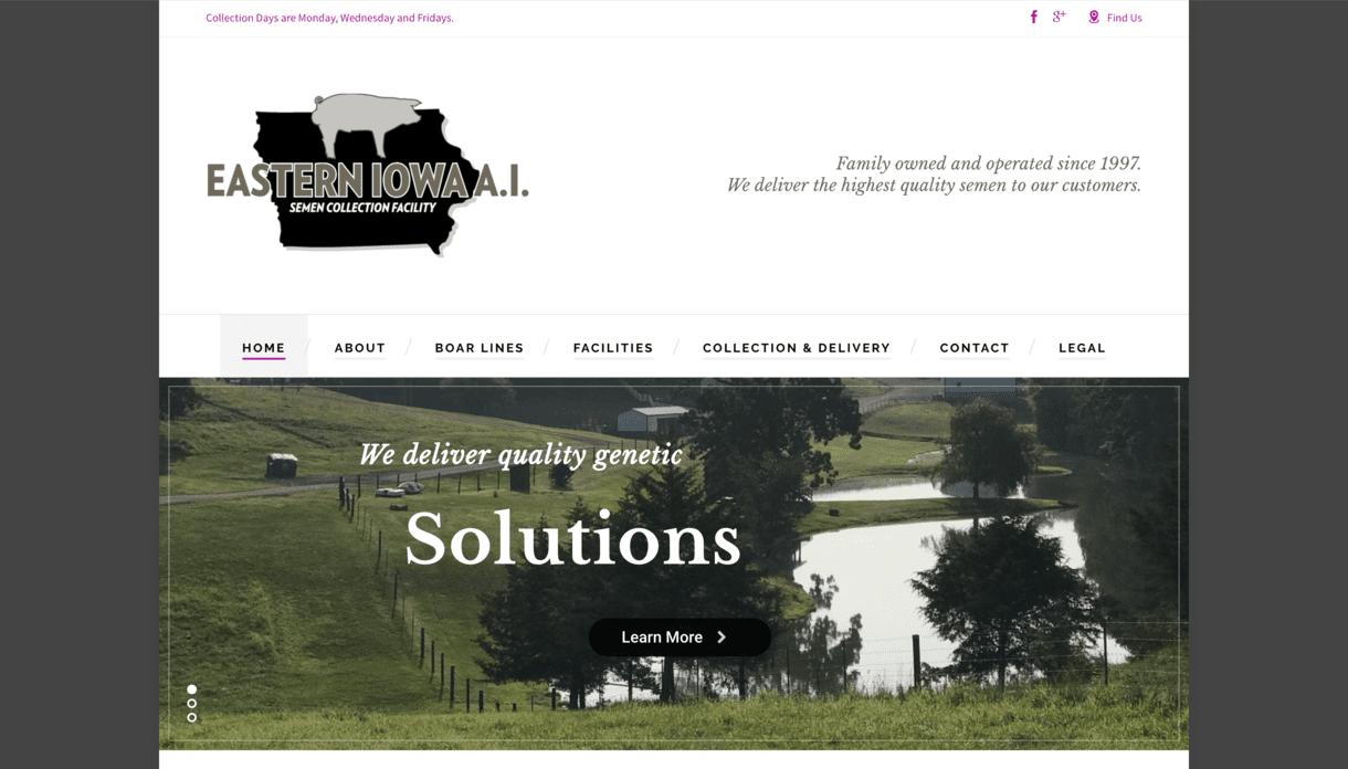 Eastern Iowa AI Inc