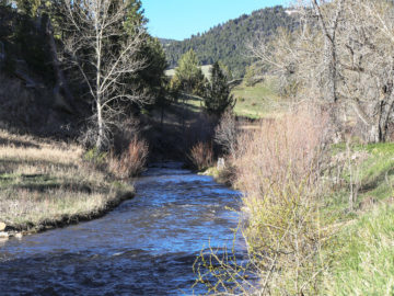 Hammer 'Em Outfitters Montana Hunting - Hunting Grounds 1