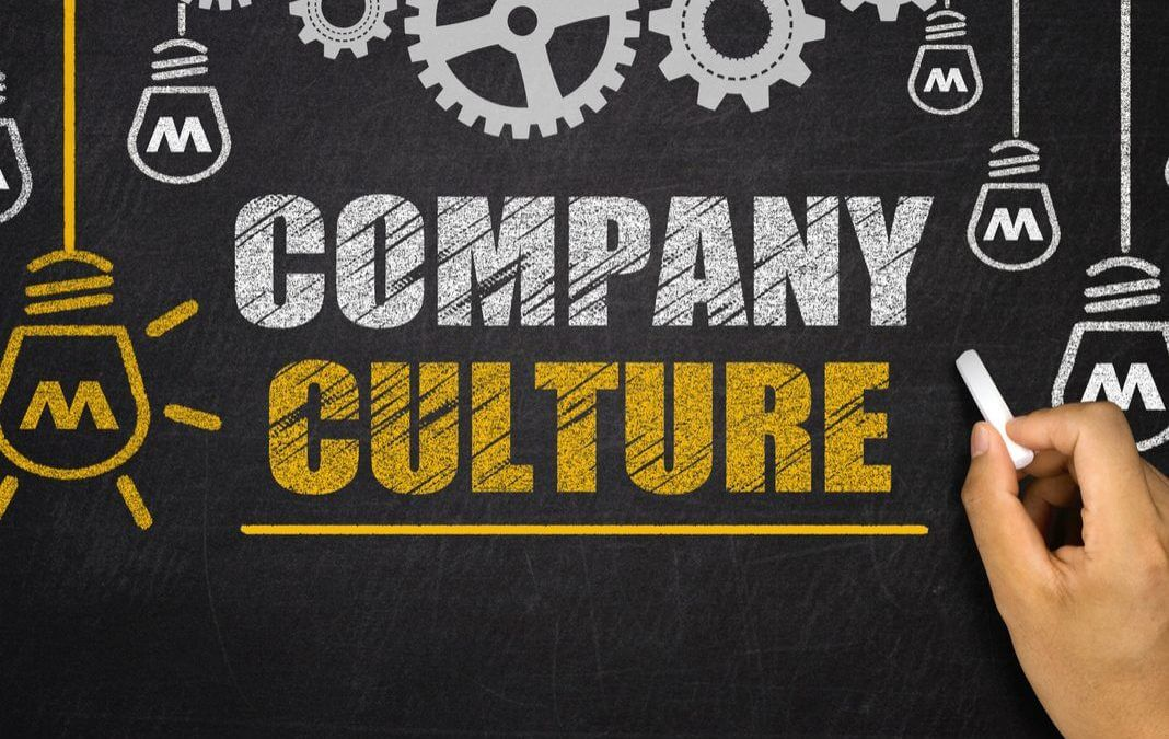 Company culture - the engine of productivity