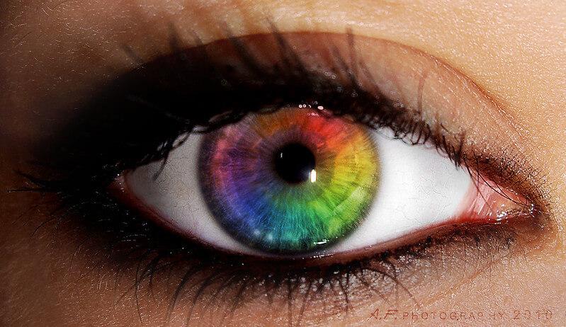 Human Eye - Talent lies behind this