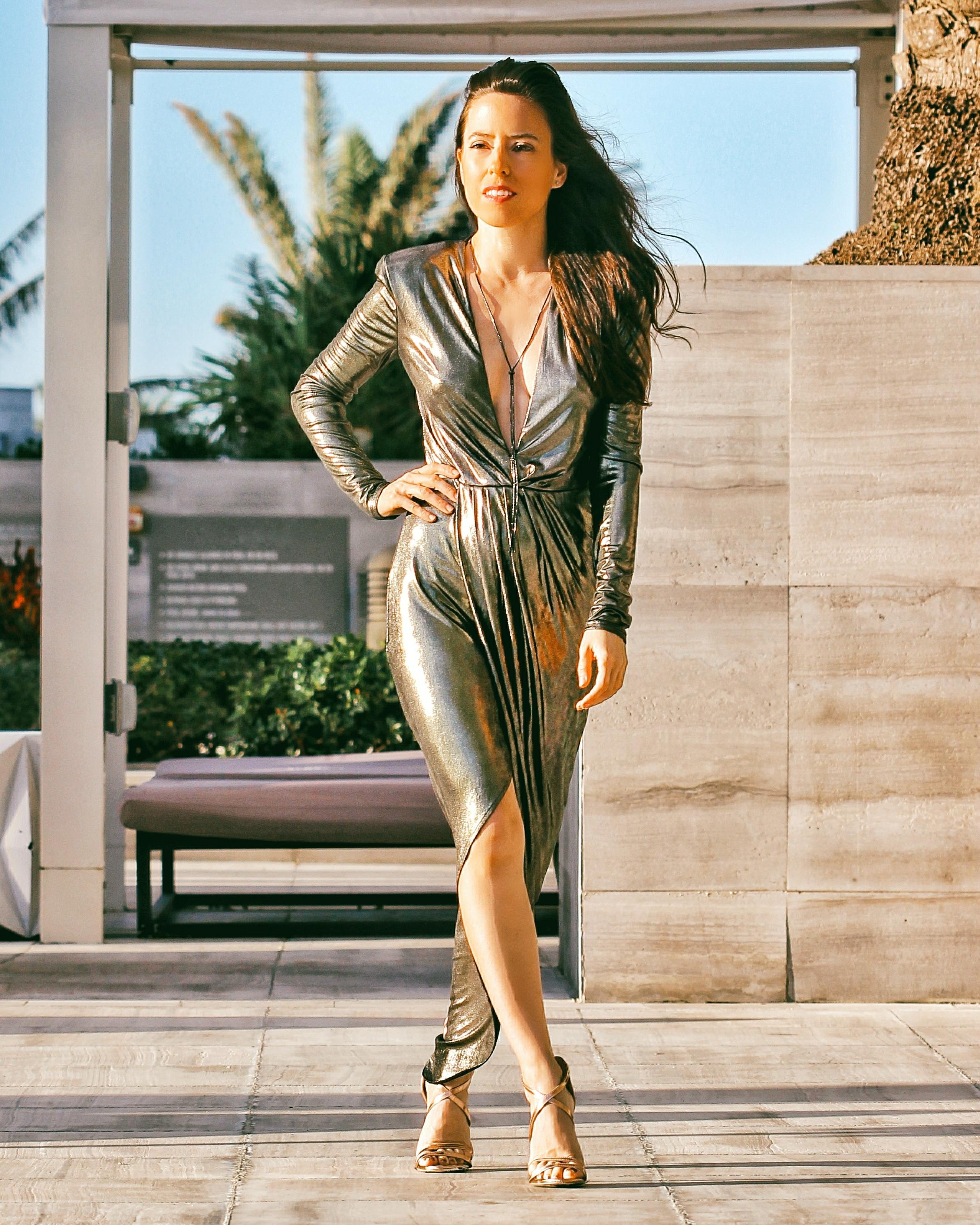 metallic dress express