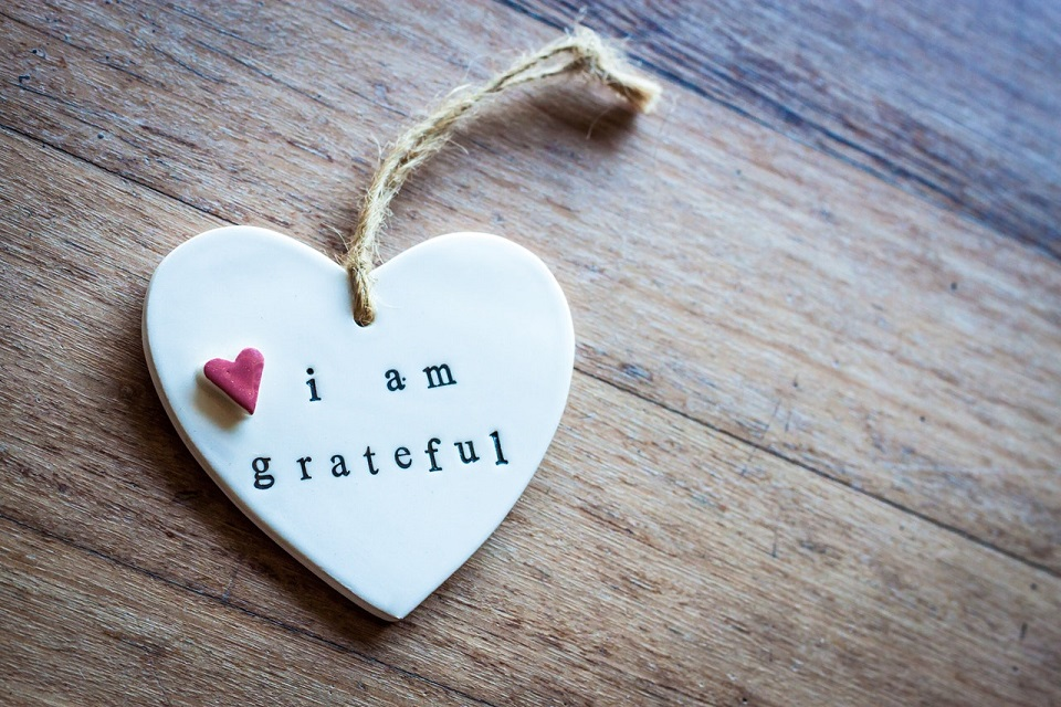Grateful at Thanksgiving