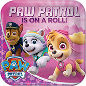 paw-patrol-girl-lunch-plates-175