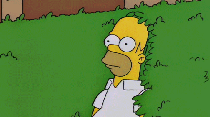 Homer soak into bushes