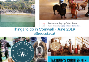 Things to do in Cornwall - June 2019