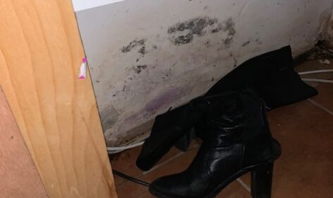 showing mold in closet