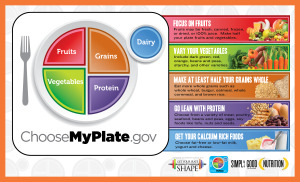 My plate - food recommendations from the government.