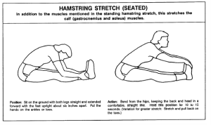 hamstring-stretch-seated