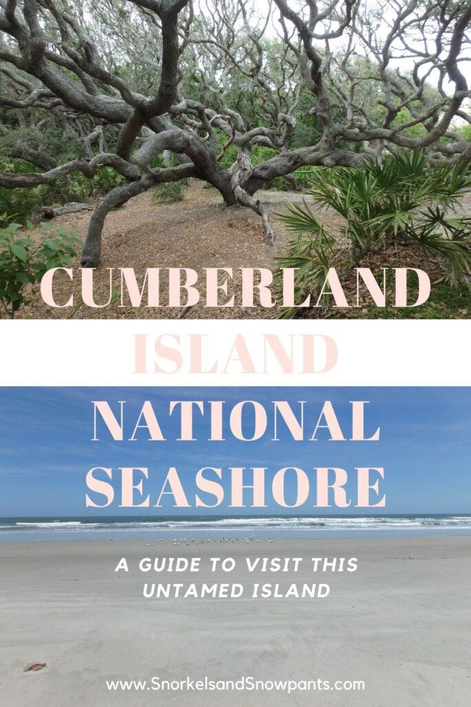 How to Visit Cumberland Island