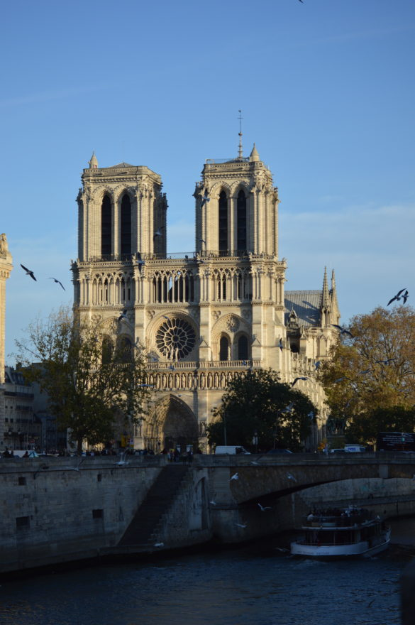 Solidarity with Paris for Notre Dame