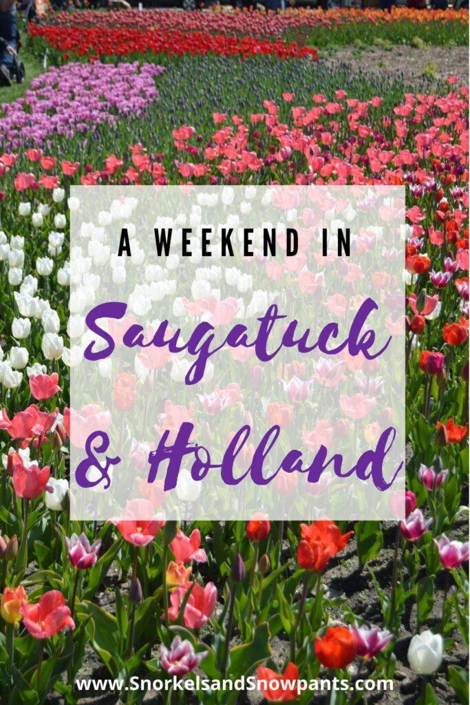 Saugatuck and Holland