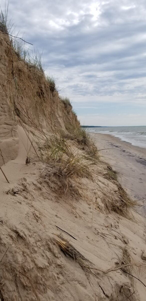 A Love Affair with the Michigan Dunes