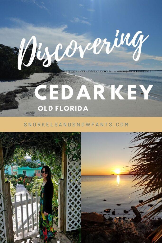 Cedar Key Pin