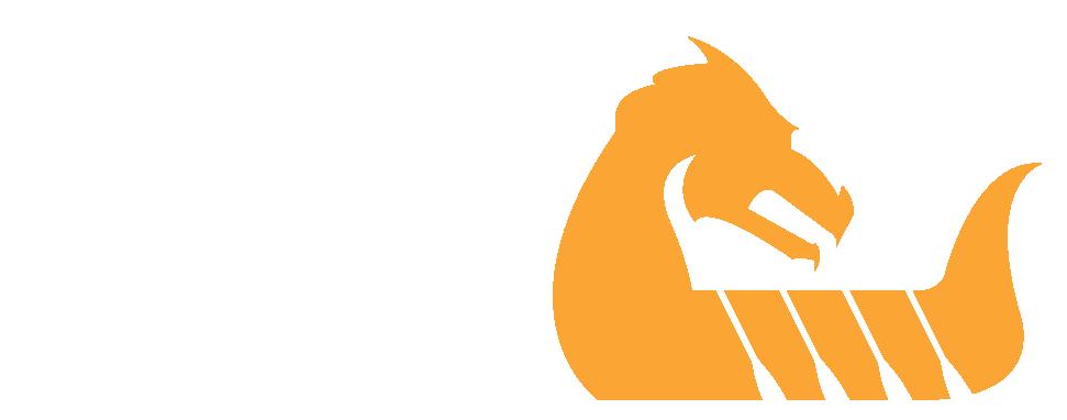 Wellington Dragon Boat Festival