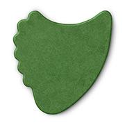 Delrex-Fin-Green-Home