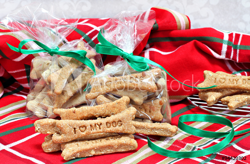 dogtreatscolorful