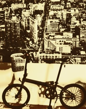 Bike_NY_©Enid_Johnstone