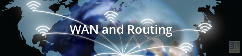 WAN and Routing
