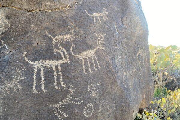 Chalk Canyon Petroglyphs