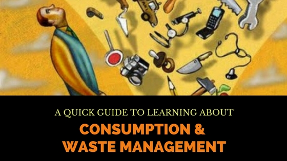 Consumption & Waste Management – A Beginner's Guide