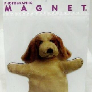 Dog Puppet Flat Magnet Photographic New In Pack Front