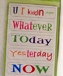 Studio 18 Office Magnets #7 New In Pack Front