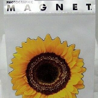 Sunflower Photographic Flat Magnet New In Pack Front