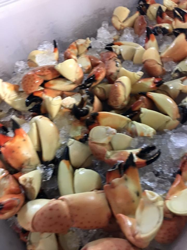 stone crabs at keys fishery