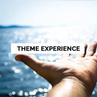 theme-experience