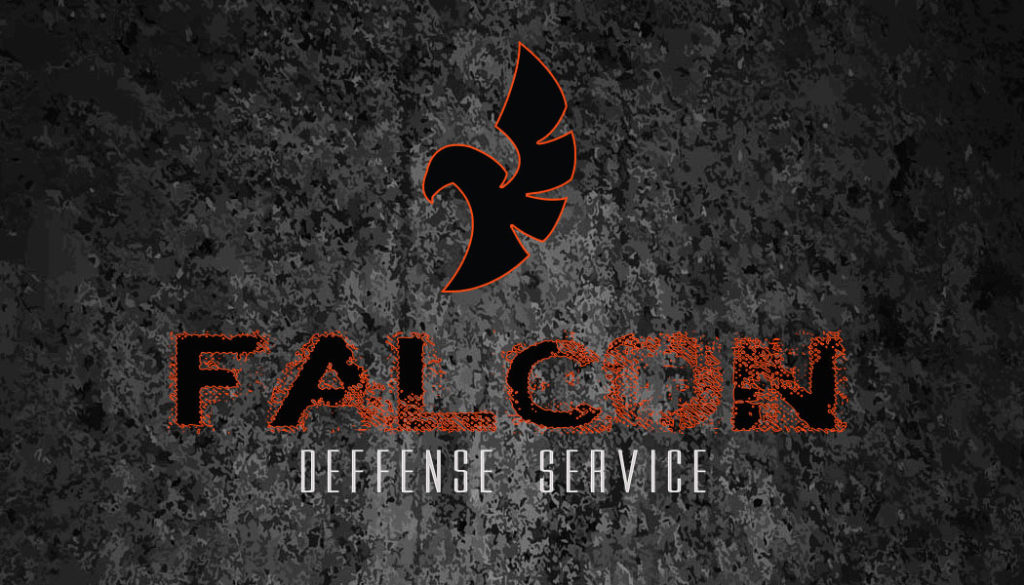 FALCON B CARD.orange