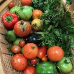 St. Francis Garden Produce