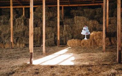 Every Barn in Texas