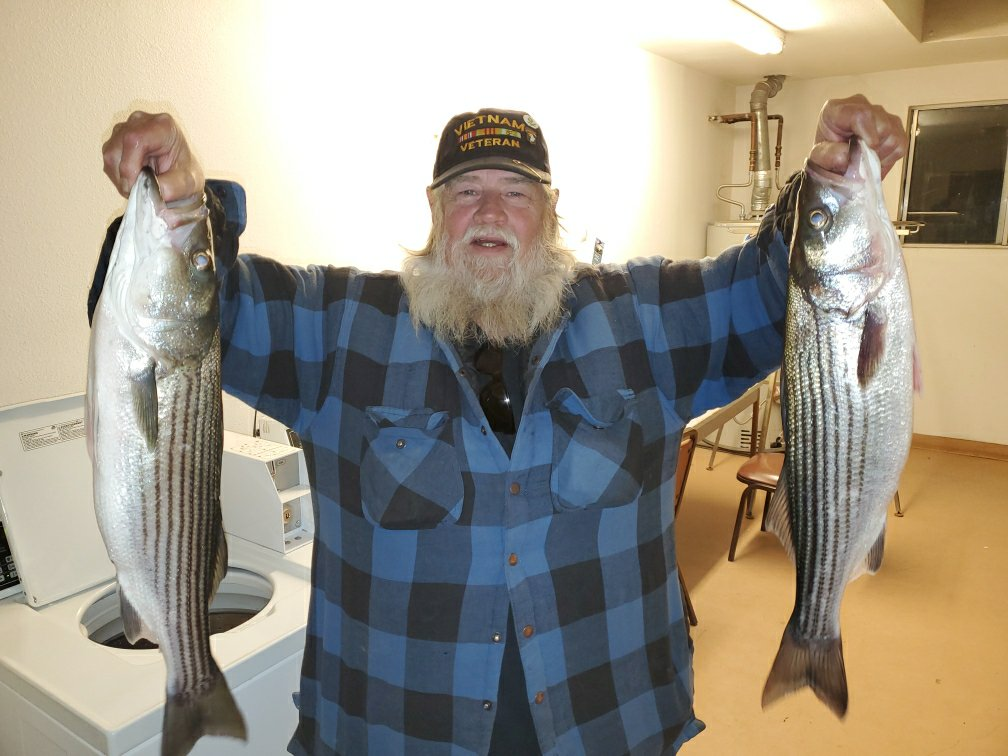 Vietnam Vet and his Stripers